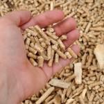 Holzpellets: Alternative zu Gas und Öl